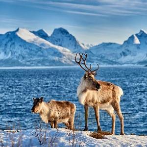 Природные достопримечательности Норвегии