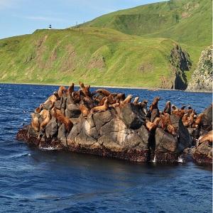 Экскурсионный отдых на острове Сахалин