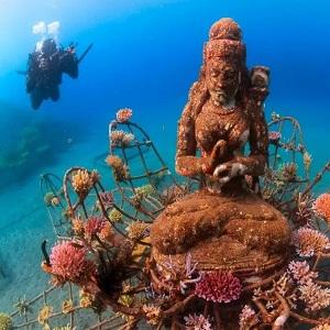 Дайвинг на острове Бали, места идеальные для погружения